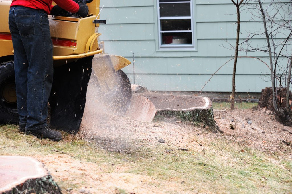 Stump Grinding Services provided in WNC by All Pro Tree & Crane