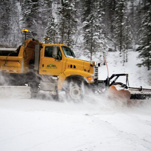 Snow Removal Services offered by All Pro Tree & Crane in WNC